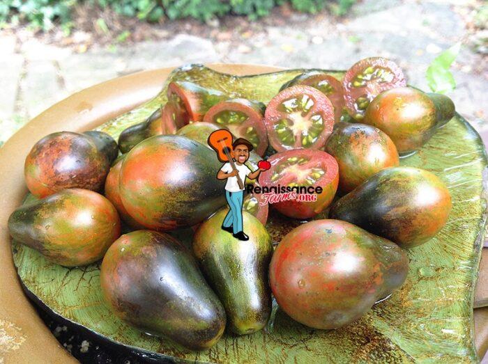 Blue-Keyes-Tomato