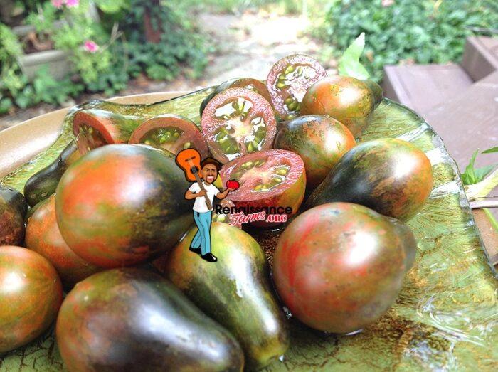 Blue Keyes Tomato 2018