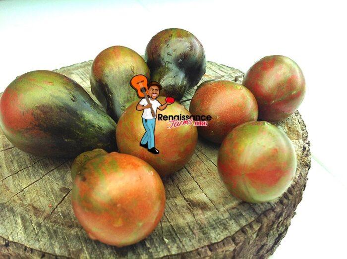 Blue Keyes Tomato 2019