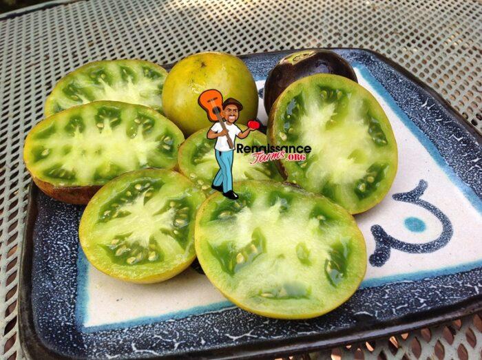 Blue Sun Tomato