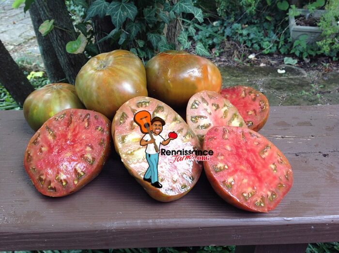 Buffalo Soldier Tomato