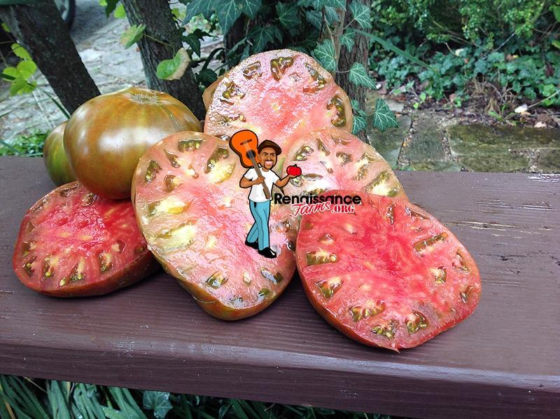 Buffalo Soldier Tomato Image