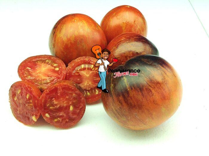 Dark Tiger Tomato 2019