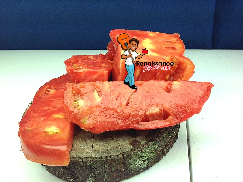 Donskoi Beefsteak Tomato