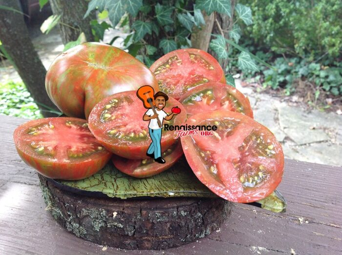 Dwarf Andy's Forty Tomato Heirloom