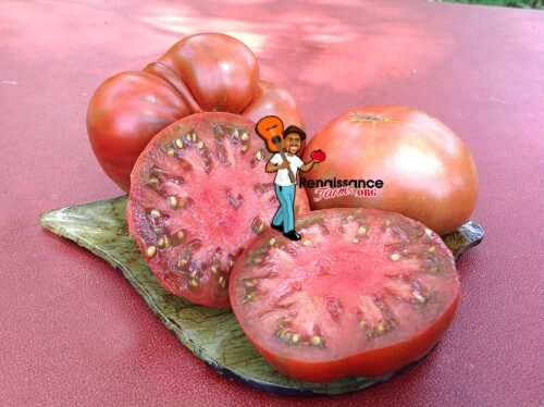 Dwarf Chocolate Champion Tomato