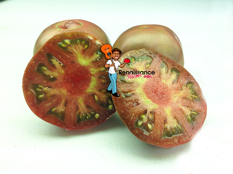 Dwarf Purple Reign Tomato 2018
