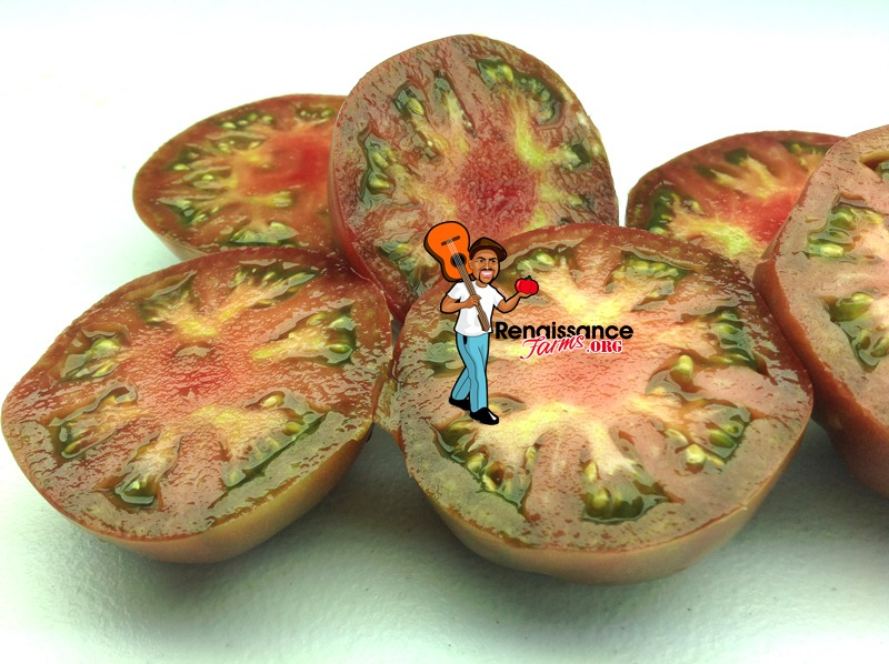 Dwarf Purple Reign Tomatoes