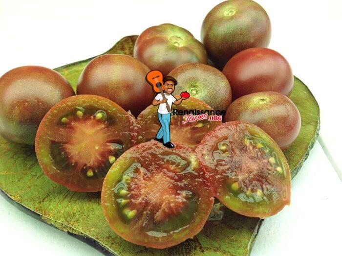 Dwarf Velvet Night Tomato