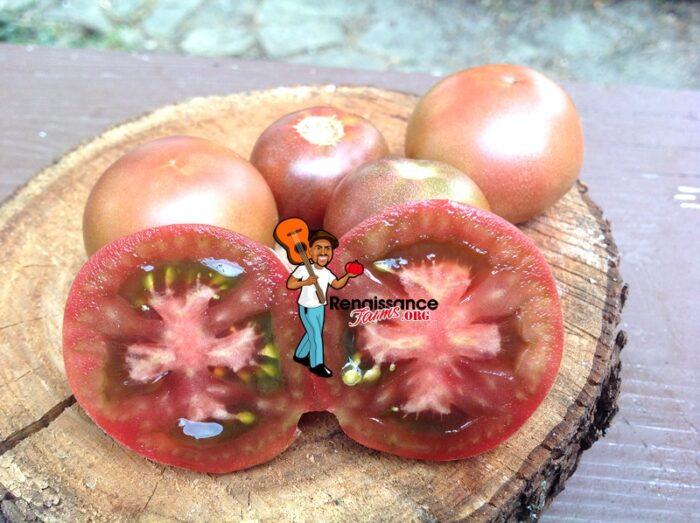 Dwarf Velvet Night Tomato Image