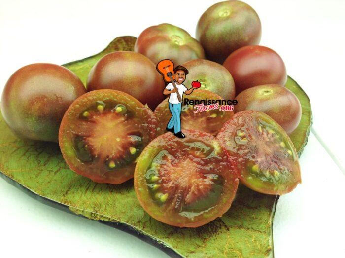 Dwarf Velvet Night Tomato Picture
