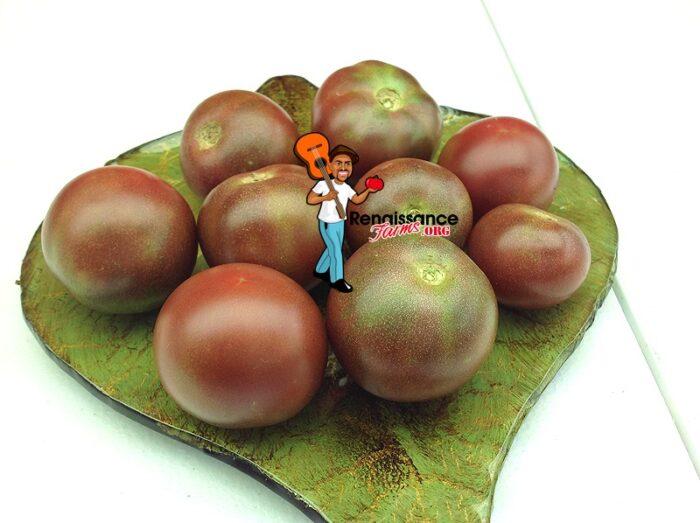 Dwarf Velvet Night Tomatoes