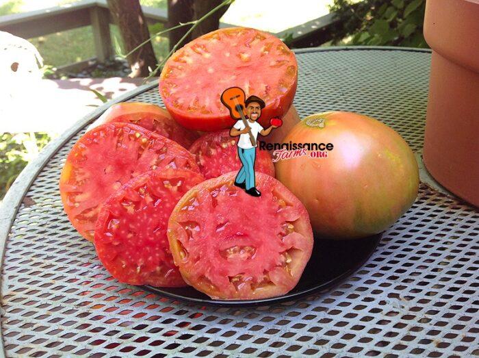 Fatima Tomatoes