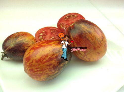 Tomato Gargamel