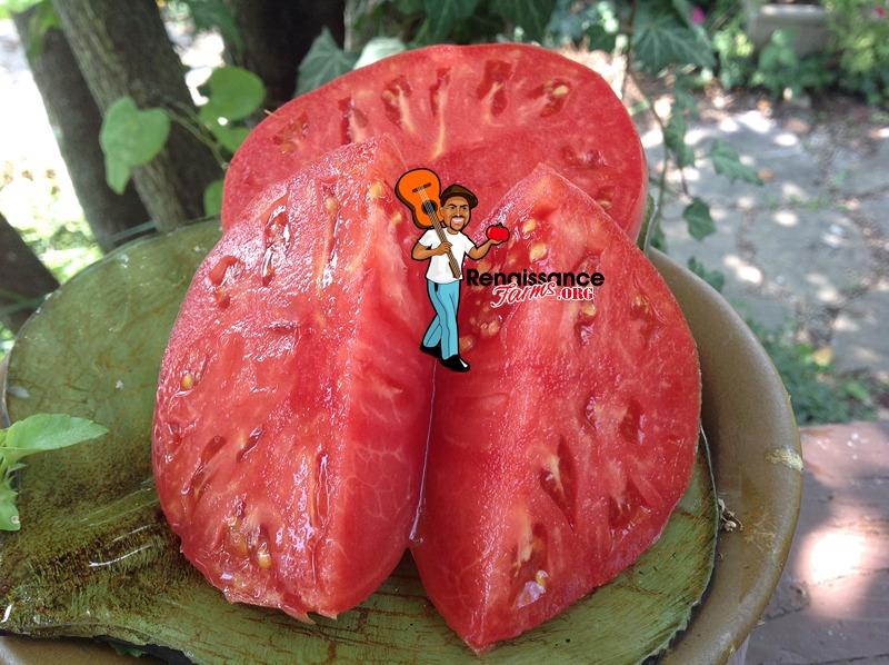German Head Heirloom Tomato