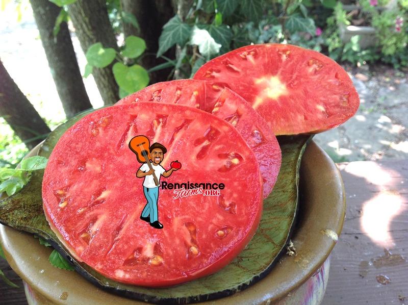 German Head Tomato Images