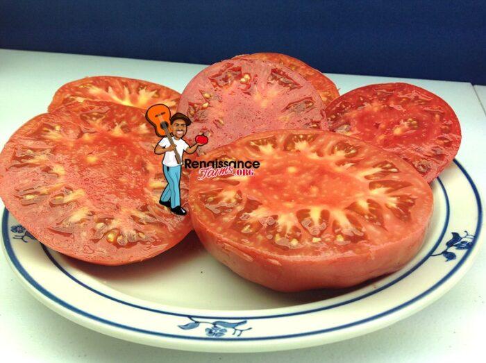 Granny_Cantrell's_Tomato