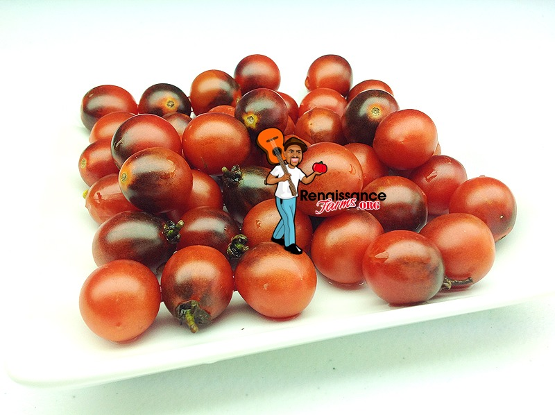 Jackie Tomato Pictures