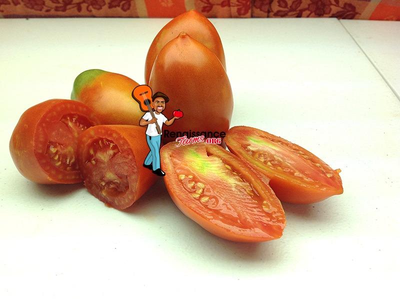 Jersey Devil Tomato 2019