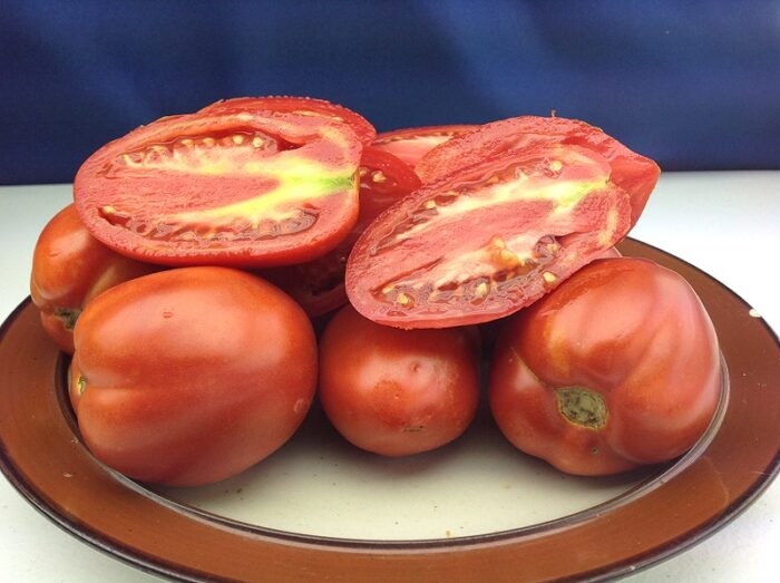 Jersey Devil Tomato Images
