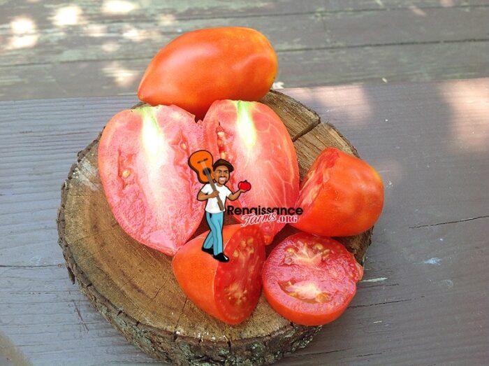 Jersey Devil Tomato Pictures
