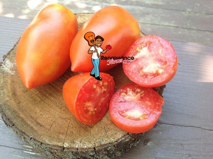 Jersey Devil Tomatoes