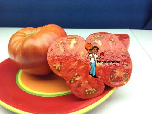 Marianna's Peace Tomato