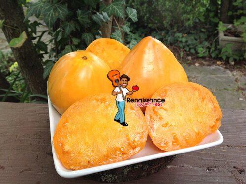 Marina Doohov Tomato