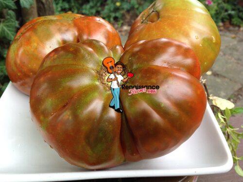 Moya Noir Tomato