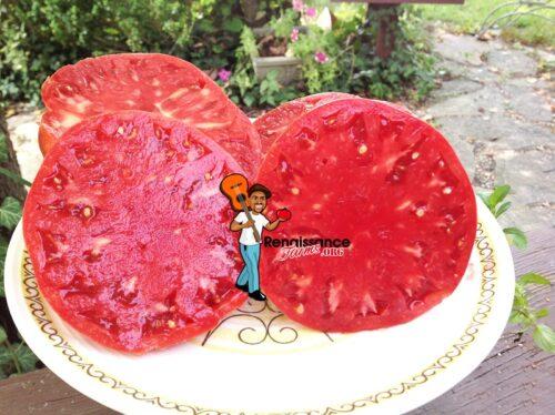 Original Italian Tomato