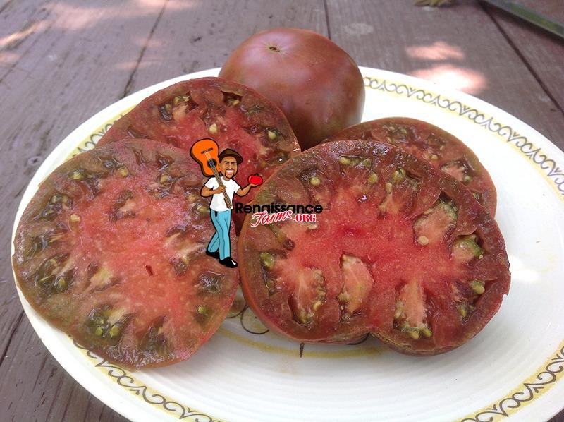 Owen's Purple Tomato