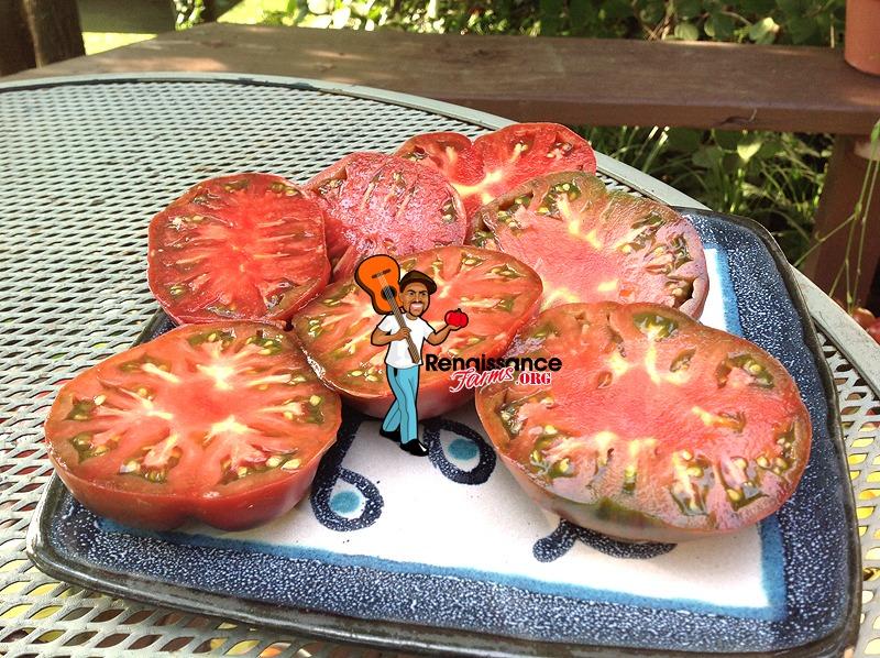 Purple Reign Dwarf Tomato