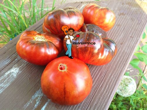 Red Beauty Tomato 2018