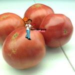 Rose Heirloom Tomato