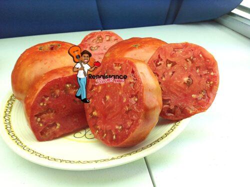 Russe-Tomato-Picture