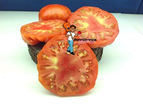 Scarlett-Heirloom-Tomato