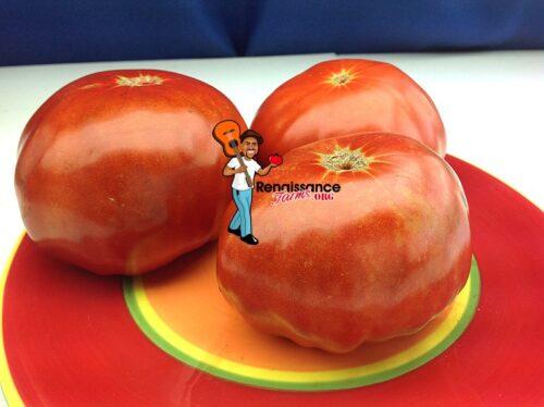 Sugar Bison Tomato