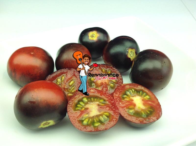 Tomato Helsing Junction Blues