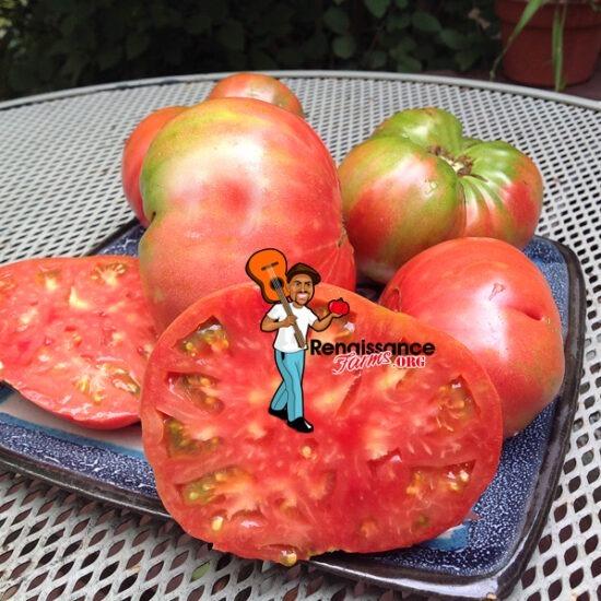 Alfonsi's Pink Beefsteak Tomato Seeds
