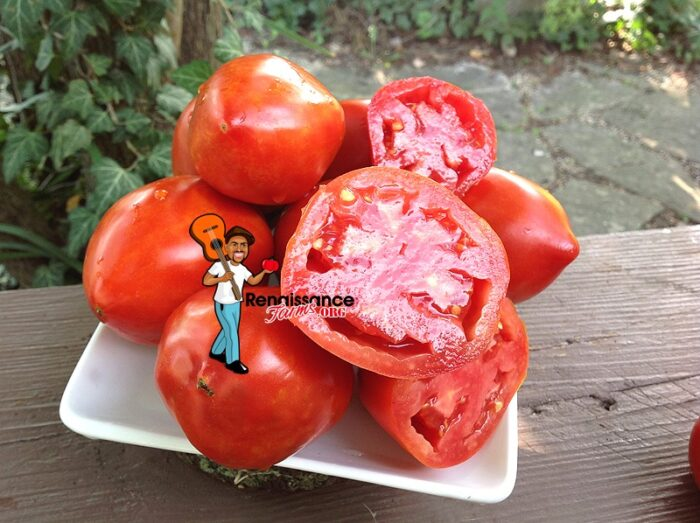 Amos-Coli-Tomato