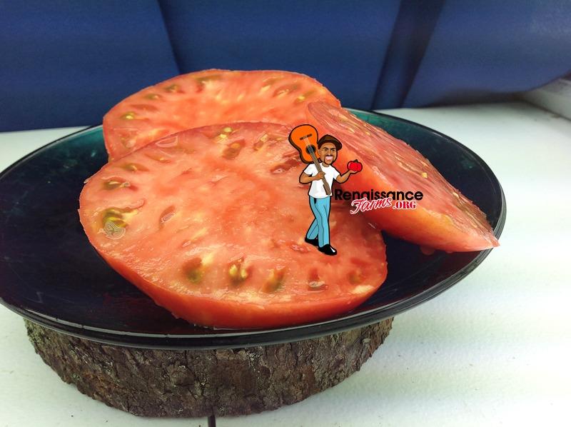 Brandywine-Purple-Tomato