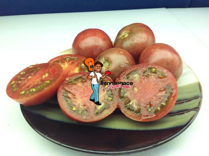Dwarf Mary's Cherry Tomato