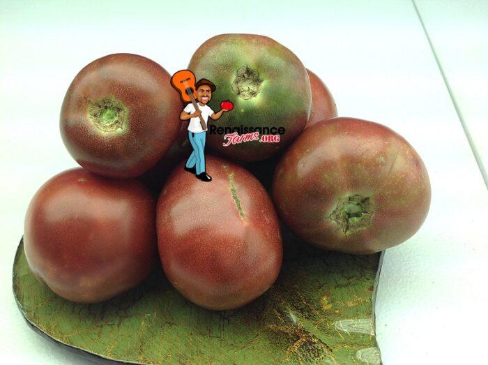 Dwarf Mary's Cherry Tomato Seeds