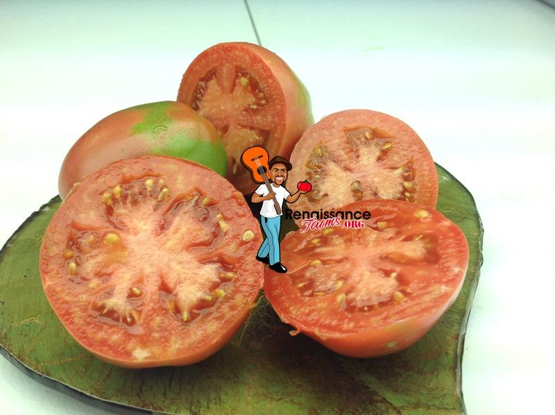 Dwarf Melanie's Ballet Tomatoes