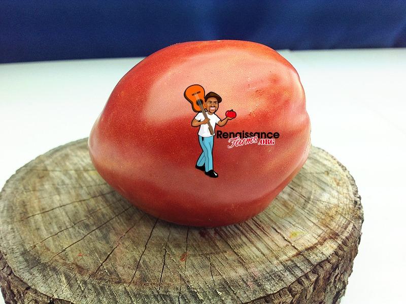 Dwarf-Sneaky-Sauce-Tomato