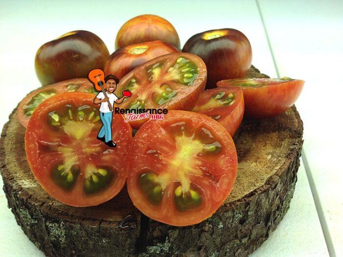 Dwarf Striped Antho Tomato 2018