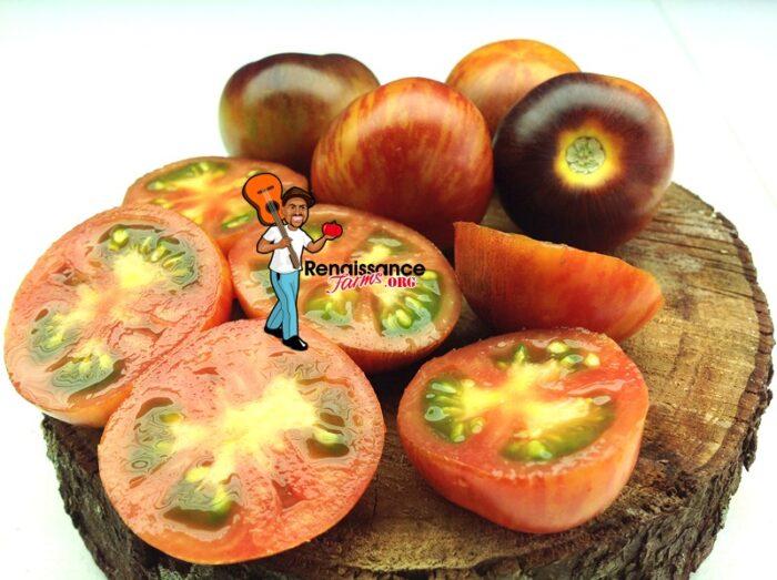 Dwarf Striped Antho Tomato Images