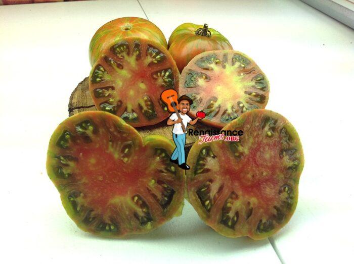 Gold-Stripe-Tomato