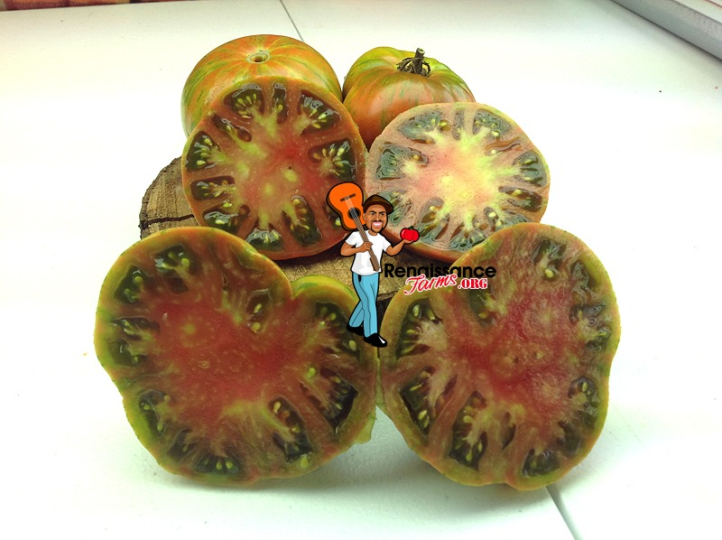Gold-Stripe-Tomato
