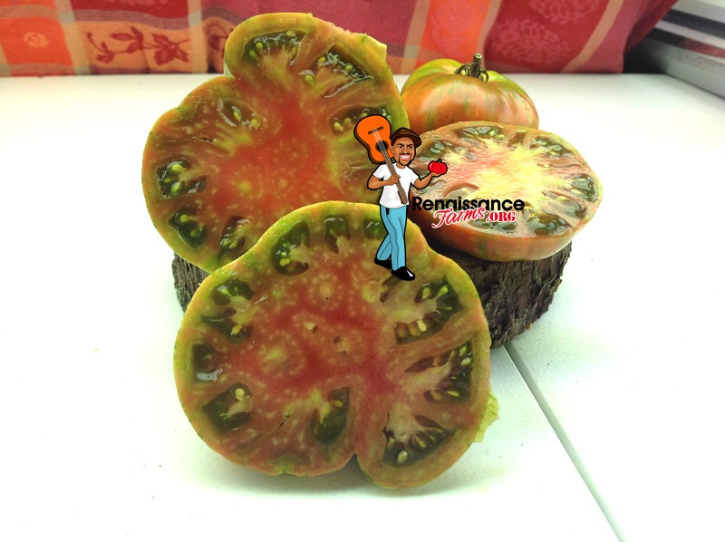 Gold Stripe Tomato